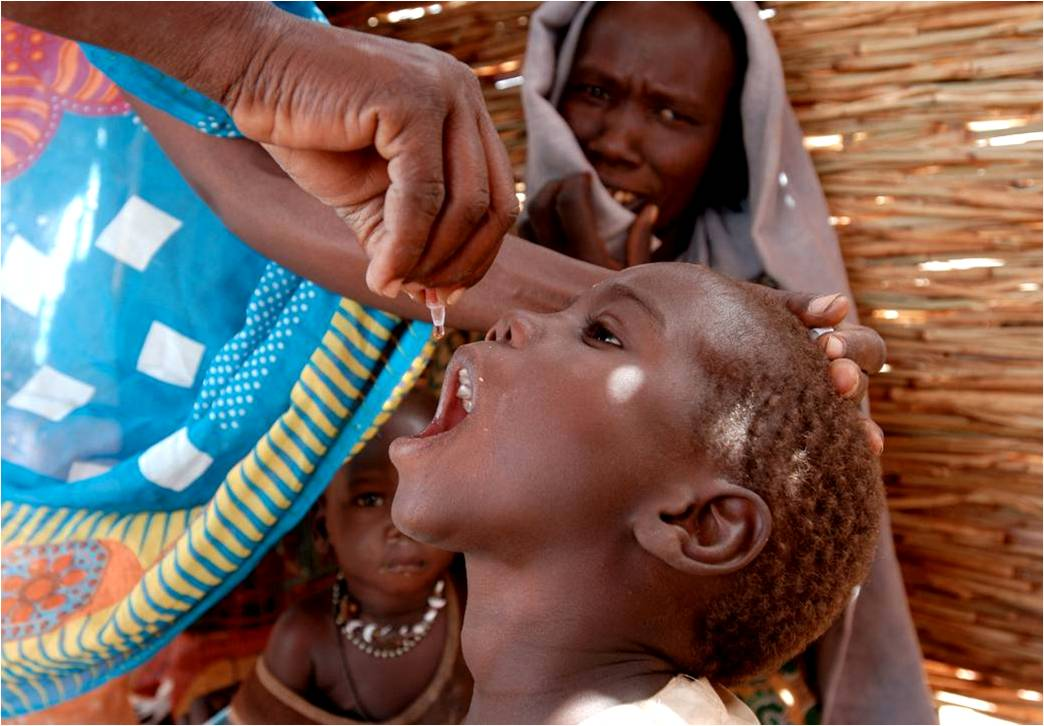 Polio laboratory network